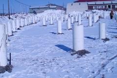 NW Arctic Heritage Ctr; Kotzebue AK